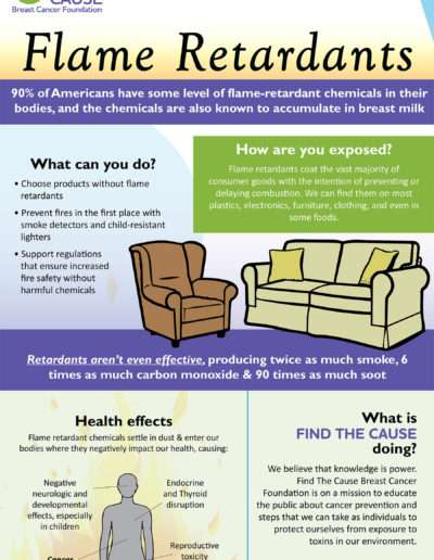 FTC Flame Retardants_outlines
